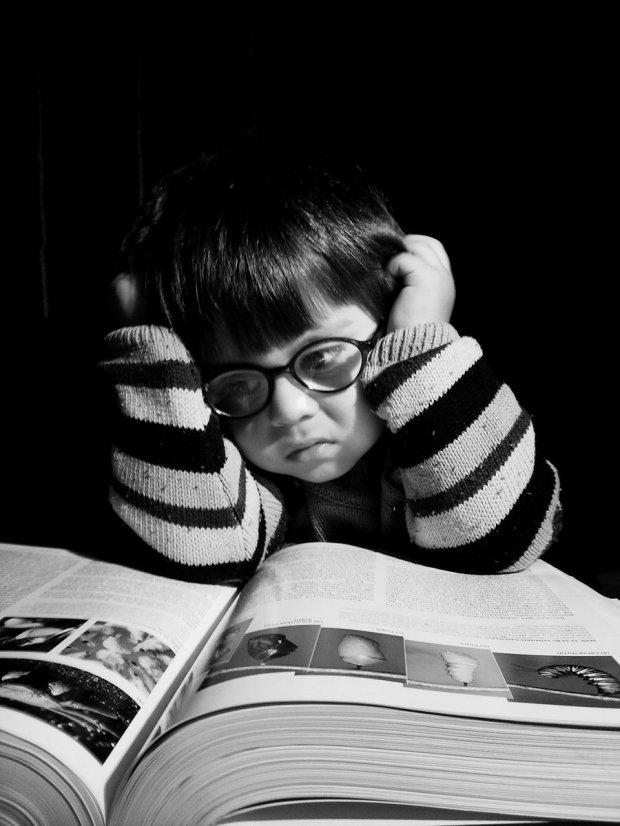 He_must_Study_Hard_by_Fobidik